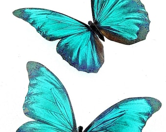Teal Home Decor Etsy