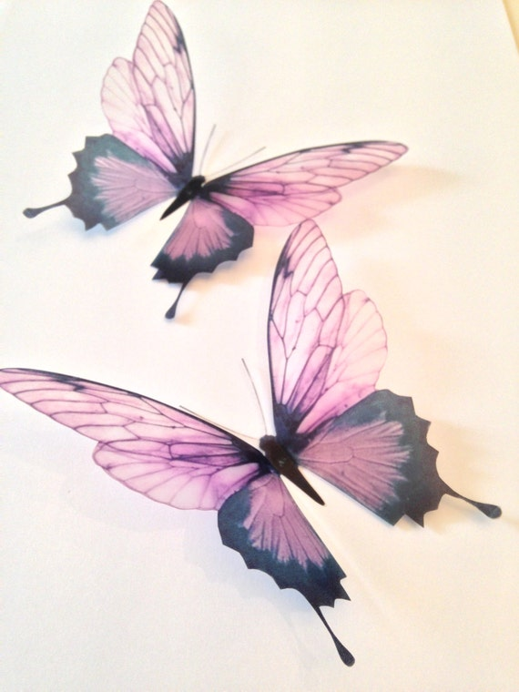 40 Pink Champagne 40D Butterflies Butterfly Decal Sticker Home Etsy Best Butterfly Home Decor Accessories
