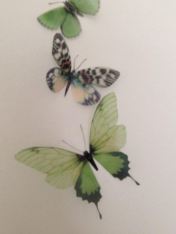 5 Mariposas Brillantes 3D Boda Accesorios de tabla de vela azul turquesa