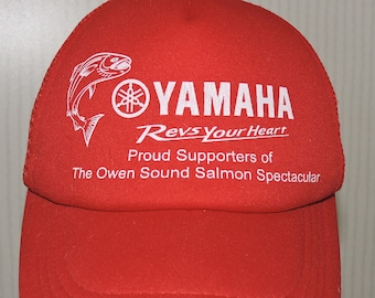 Owen sound salmon spectacular 2018 prizes clip