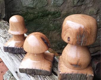 Trio of fungi