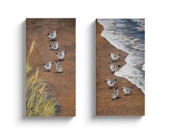 Sanderling art print - pair of canvases - set of two sanderling canvas prints - beach dune - sea grass - sandpipers - coastal decor