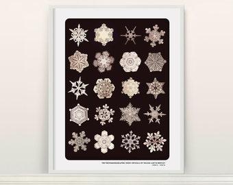 Snowflake Typology - Winter Art - Snowflake Poster - Snowflake Art - Microscope - Christmas - Snow Art - Snowflake Print - Winter Wall Art