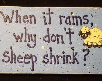 shrinking sheep