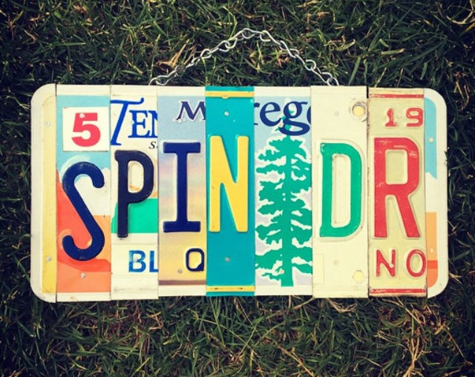 Spin Doctor Sign, Political Gifts, Media Gift Ideas, Politics Gift. License Plate Sign, Funny Political Gift.