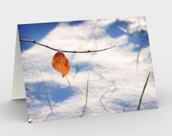 Winter Scene Cards, Blank Note cards, Nature Note Cards, Greeting Cards, Three Note Cards, 5x7 Cards, Winter Art Card, All Occasion Cards