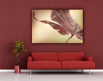 Autumn Leaf Photograph, Red and Beige Home Decor, Horizontal Art, Living Room Wall Art, Fine Art Nature Photography, Minimal Photo Print