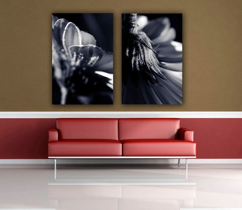 Nature photograph Choose your Own Prints Two Wall Print set Macro Photography Black and White Photos Large Wall Home Decor Photo Prints