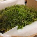Sheet Moss, 10 sq. ft. Live Moss
