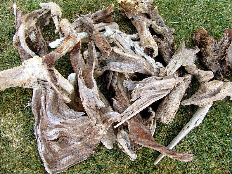 20 Assorted Beautiful Pieces of Driftwood image 0