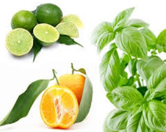 Lime Basil Mandarin Jo Malone Type Fragrance Oil