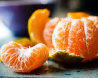 Mandarin Premium Fragrance Oil 16 oz. - 8 oz. - 4 oz. - 2 oz. - 1 oz. - 1/2 oz. Bottle Or 1/3 oz. Roll–On Bottle