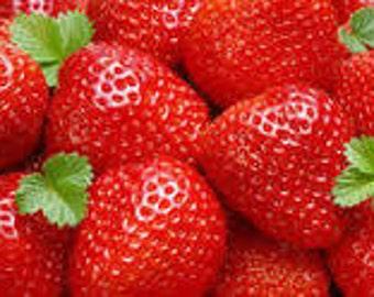 Strawberry Passion Premium Fragrance Oil  16 oz - 8 oz. - 4 oz - 2 oz  - 1 oz. - 1/2 oz. Bottle Or 1/3 Ounce Roll - On