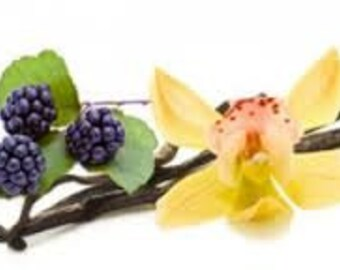 Blackberry Vanilla Fragrance Oil * Wax Melts * Bar Soap * Candles * Reed Diffuser Oil