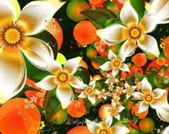 Orange Blossom By Jo Malone Designer Type Fragrance Oil