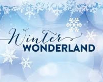 Winter Wonderland Statkin Type Fragrance Oil