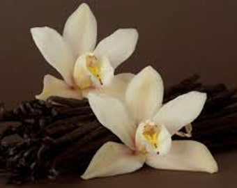 Vanilla Rose Premium Fragrance Oil Used For Candle-Soap Making/ Bath-Body/Cleaning/Incense/Diffuse/Air Freshener/Cologne/Tarts/Sprays