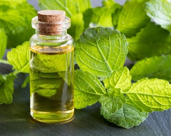 Melissa(Melissa Officinalis) Pure Essential Oil