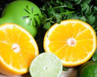 Citrus & Cilantro Fragrance Oil