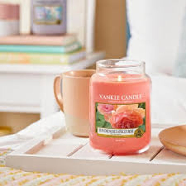 Yankee Candle Sun Drenched Apricot Rose Small Jar FREE P/&P