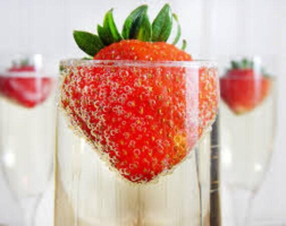 Berry Sangria Premium Fragrance Oil 16 Oz Bottle
