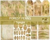 FOREST FERNS Vintage BOTANICAL Illustrations   Journal Printable Digital Collage Sheet  Lined Paper Instant Download