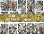 FOREST TRAIL ECO Print | Digial Leaf Prints Junk Journal Backgrounds | Eco Dyed Paper Earthtone Paper Leaves