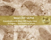 SEPIA ECO DYED Paper | Eco Print Junk Journal Pages (Sepia West Cliff) Has matching lined paper