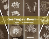 SEA TANGLE in Brown | Digital Download for Vintage Nature Junk Journal | Collage Sheet for Paper Crafters