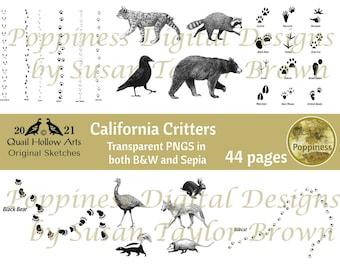 FOREST Animal Tracks Transparent PNG digi stamp for Junk Journal Printable Nature Ephemera Downloadable Clipart
