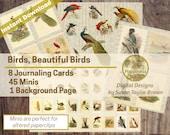 Digital Vintage Birds   Download Nature Junk Journal Pages