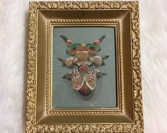 Original art: Southern Flannel Moth (Megalopyge opercularis) in vintage frame. Unique nature illustration.