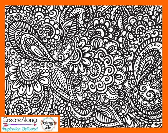 Silk screen stencil Paisley Garden Party overall design