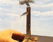 Mini Dead Tree Trunk Stump with Huckleberry Bush Model