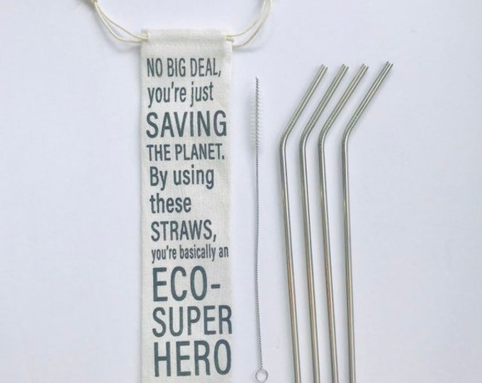 ECO-SuperHERO Straw Pouch - includes stainless straws + straw cleaner