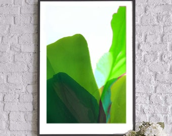 Lime Green Abstract Floral Art Print, Acid Green Painting, Interior Design, Bright Flower Painting, Iris Wall Art