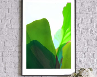 Lime Green Abstract Floral Fine Art Print of Original Painting, Interior Design, Bright Flowers
