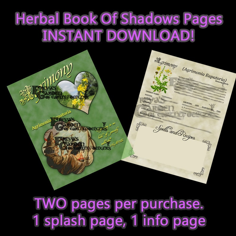 Agrimony Herbal Book Of Shadows Herbal Witchcraft image 0