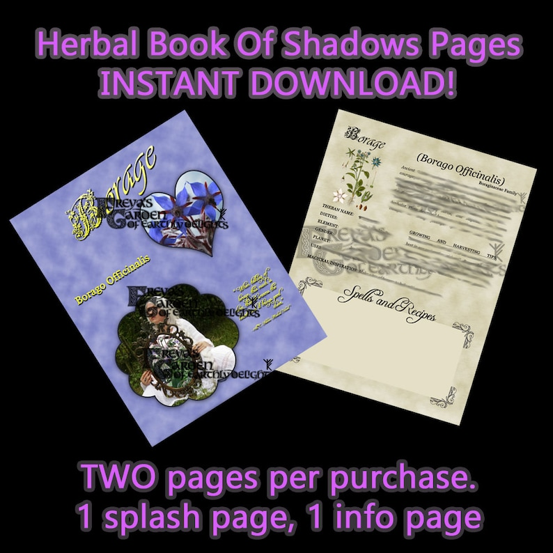 Borage Herbal Book Of Shadows Herbal Witchcraft Information image 0