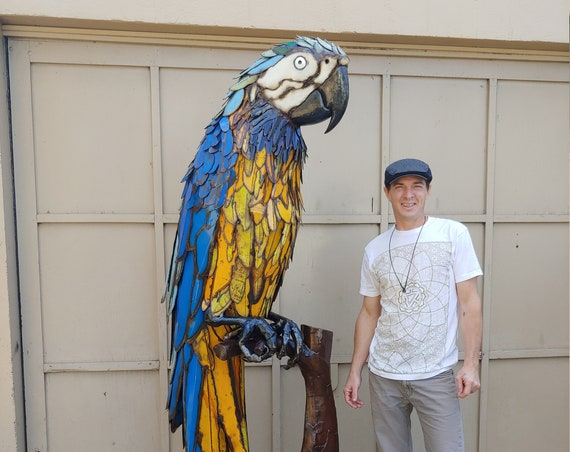 Phill Macaw