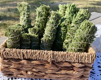 Dried Cypress Sacred Smoke Smudge Bundles - Large or Small - ONE - Sage alternative Sustainably Harvested