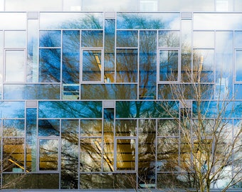 Building with reflection of tree and clouds-blue and yellow 4x6,5x7, 8x10, 11x14