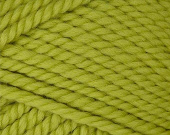 Patons Classic Wool Bulky - Spring Green - only 1 skein in stock! Lot # 05/2013