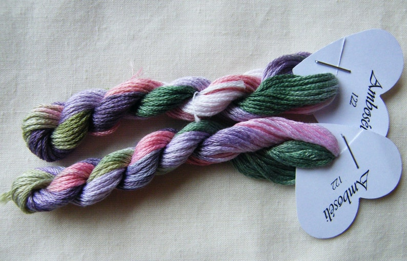 122  Amboseli Fils à Soso hand dyed variegated stranded image 0