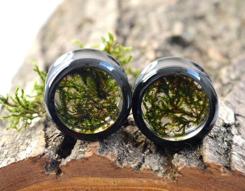 moss plugs real moss gauges green plugs floral gauges Girly plugs ear tunnels unique Gauge Plug Earrings 2g 0g 00g 12 916 58 1116 1316