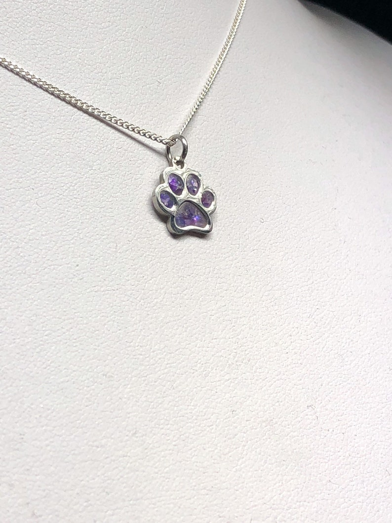 Keepsake Jewelry Cremation Ashes Memorial Dog Paw Cat Paw Necklace Ashes Jewellery