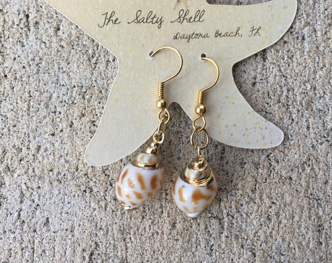 Small Gold Areola Shell Earrings
