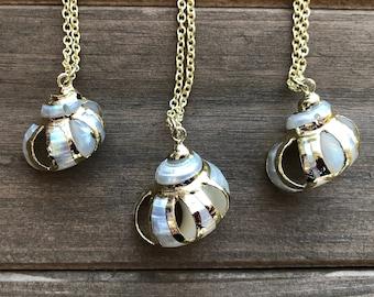 White Swirl Turban Shell Earrings