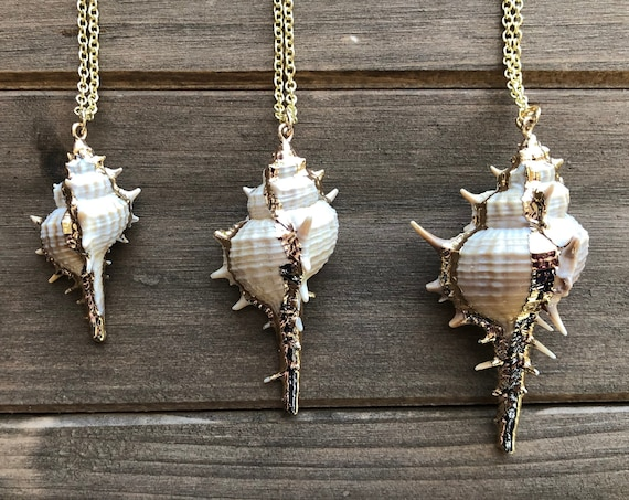Large Shell Necklace in Gold