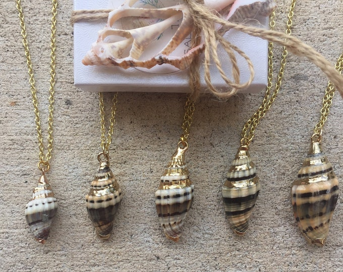 Black Miter Shell Necklace